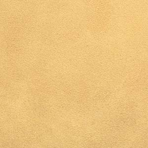 zapato ante color beig