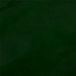 zapato charol color vert